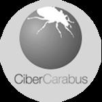 link-cibercarabus (1)